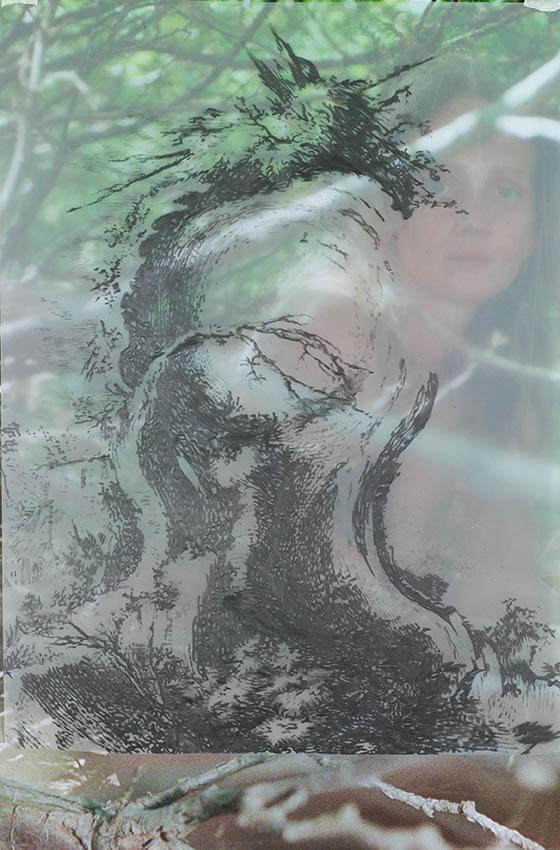 Iris Andraschek