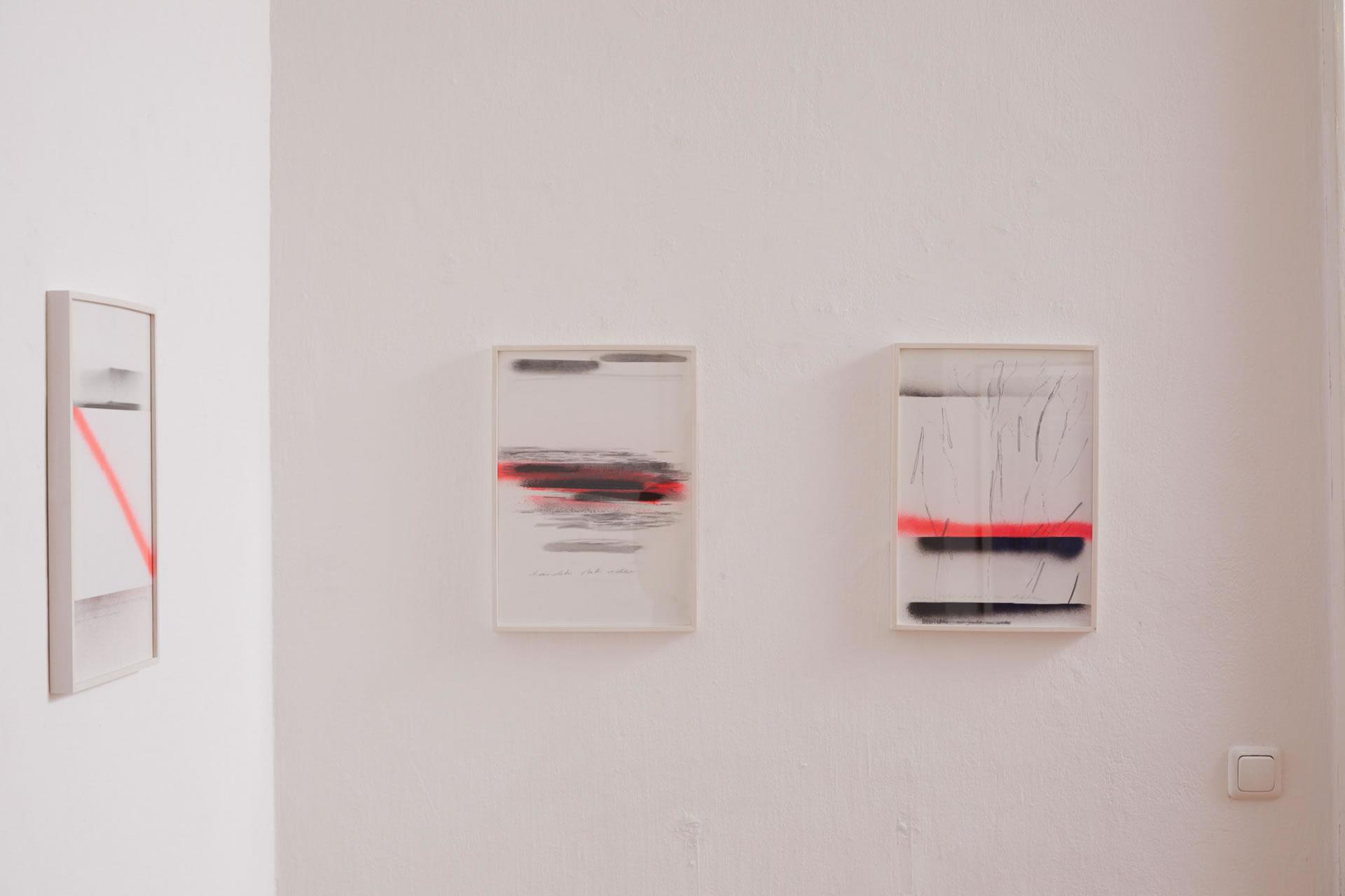Veronika Dirnhofer | Zeichnungen | Raum 1 | Galerie3 | Foto Johannes Puch