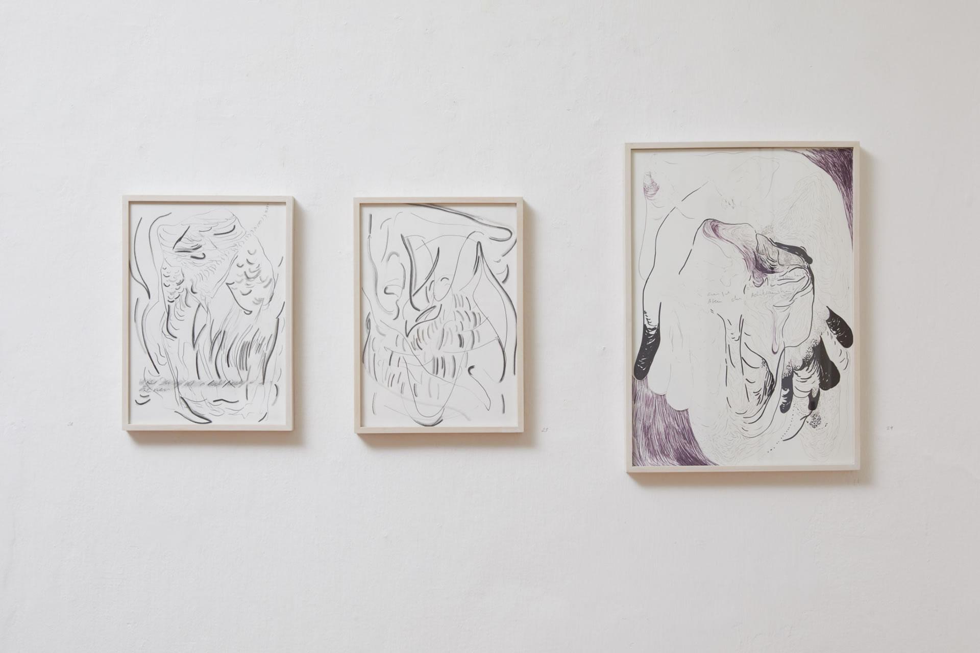 Veronika Dirnhofer | Zeichnungen | Galerie3 | Foto Johannes Puch