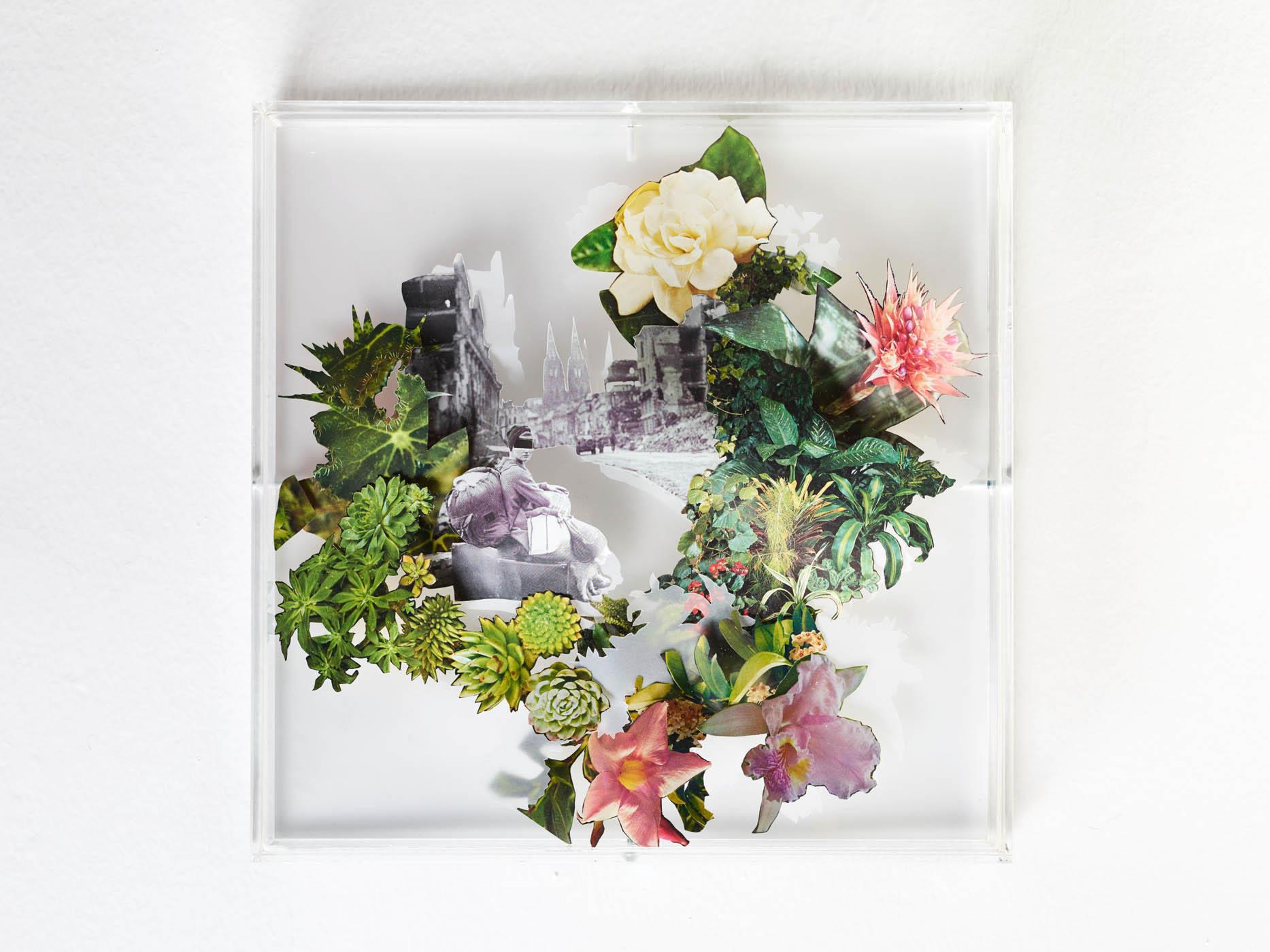 Karen Elliot | Colonia Blüht Auf | 2017 | 30x30cm | Collage in Acrylglaskasten | Foto Johannes Puch
