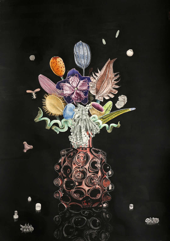 Payer Gabriel | O.T. | 2019 | Buntstift Grafitpaste | 59,4x42cm | anti species | Galerie3