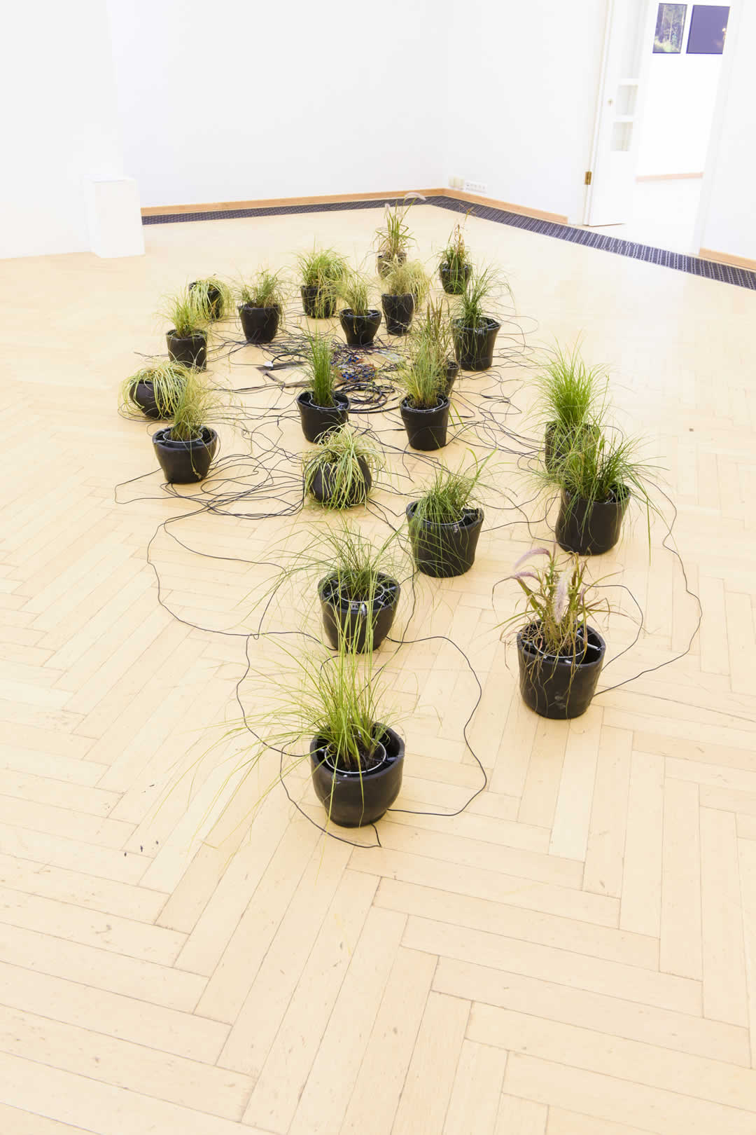 BA Kunstpreis 2020 | Paul Spendir