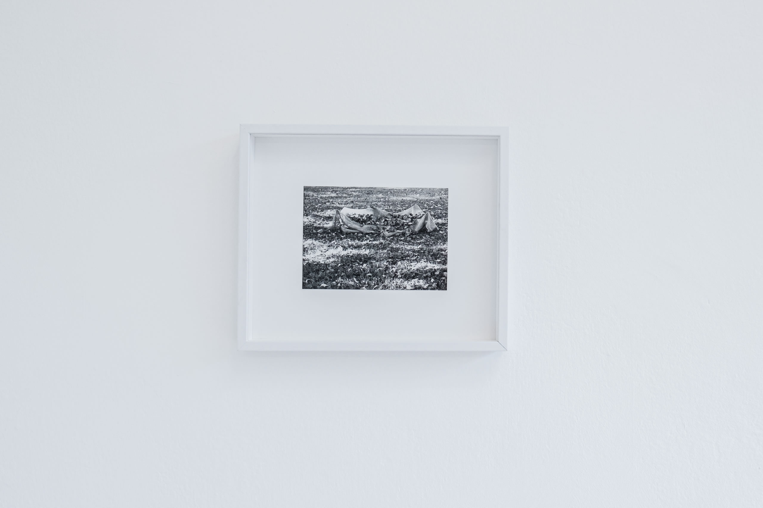 3. Törn | Margot Pilz | Foto Manu Lasnik | 2019 | Galerie3